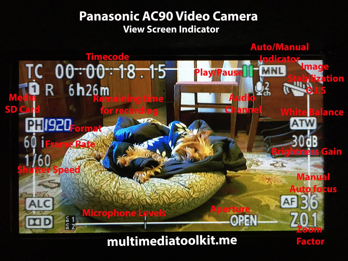 Panasonic AC90 view indicator