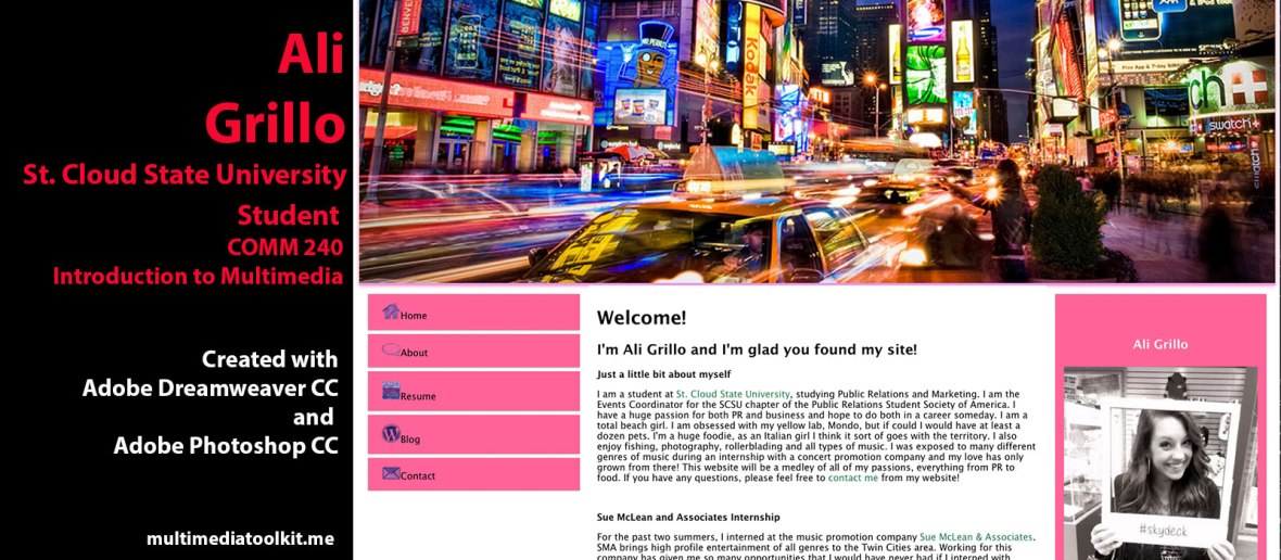 Visit website by Ali Grillo, Student at St. Cloud State University