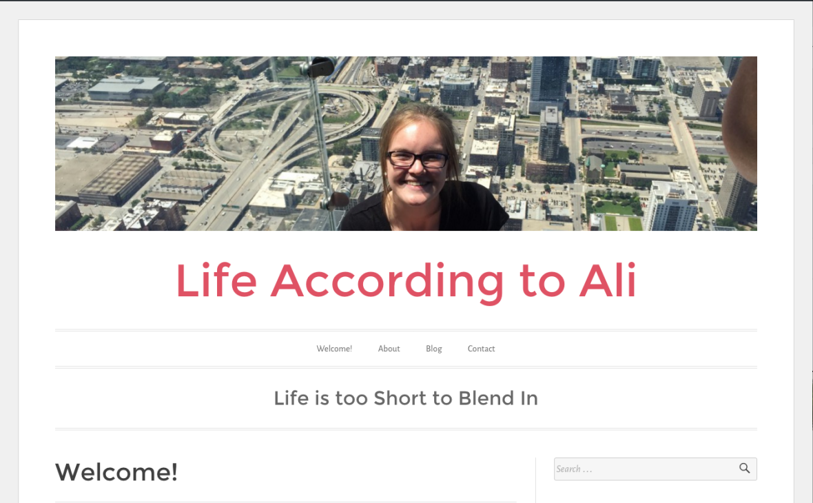 Visit WordPress site by Ali Subbert Student at St. Cloud State University