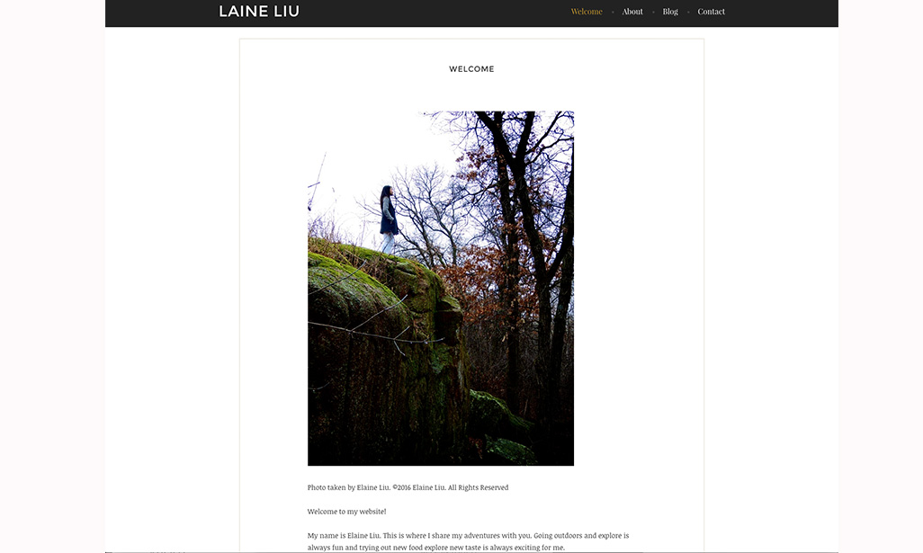 Visit WordPress site by Elaine Liu, Student at St. Cloud State University