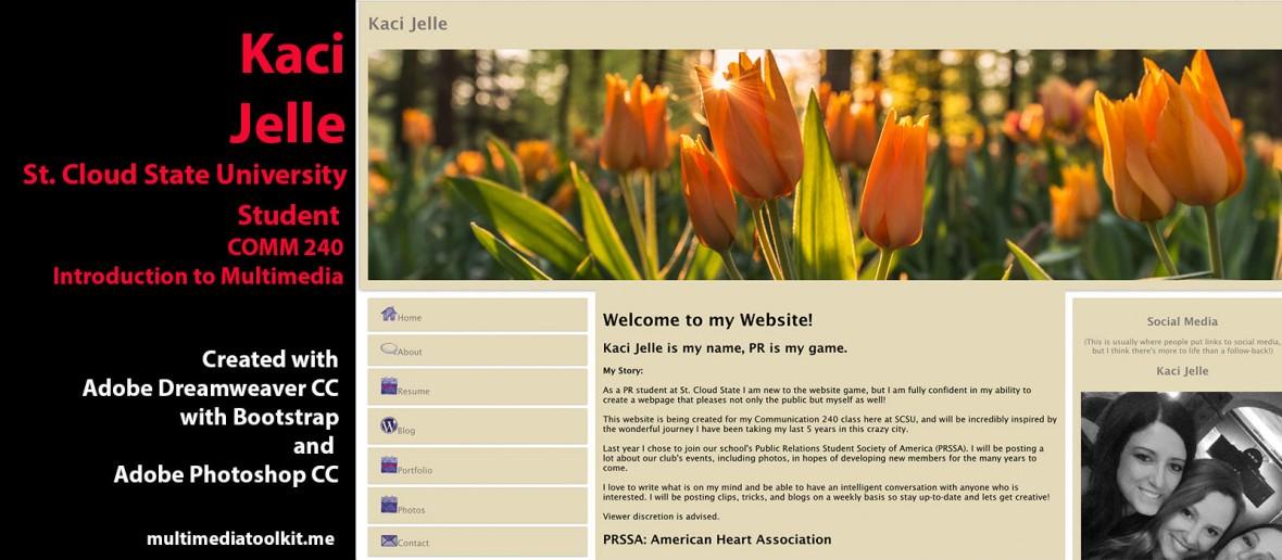 Visit website by Kaci Jelle, Student at St. Cloud State University