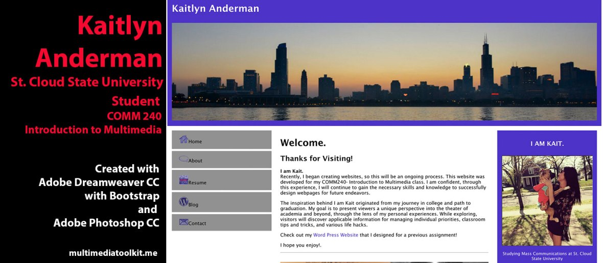 Visit website by Kaitlyn Anderman, Student at St. Cloud State University