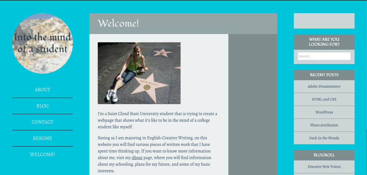 Visit WordPress site by Victoria Luing Student at St. Cloud State University