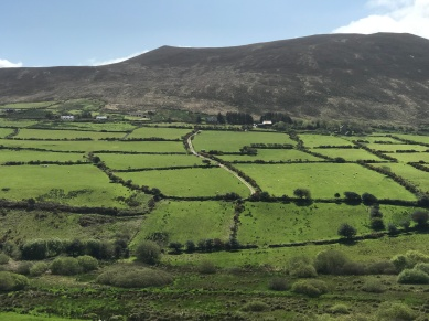 Overall View - County Kerry, Ireland. Photo by Jannet Walsh. ©2018 Jannet Walsh. All Rights Reserved.